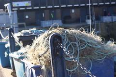IMG_6892 (cindyincidentally) Tags: whitstable kent kentcoast britishbeach seaside seashore seasidetown