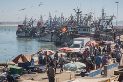 Port (Ged Slaughter Photography) Tags: port harbour fishing boats people busy gulls fish gedslaughter street travel tourism essaouira maroc morocco coastal coast sea