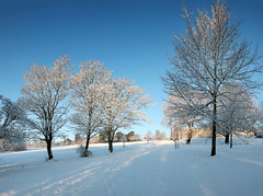 2 Another cold beautiful snowy day at University of Kent (Jim_Higham) Tags: he university excellent teaching research gold tef england christmas card eliot rutherford wigoder college winter slopes