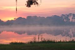 Sunrise on Lake Huntley (River-Life) Tags: riverlife nikon d5300 morning sunrise florida nature outdoors outdoor foggy