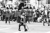 Tournament of Roses Parade, Pasadena, California (paccode) Tags: frown d850 winter street people cap parade marching plaid hat solemn urban march candid concern pasadena kilt blackwhite cane california monochrome music serious downtown unitedstates us