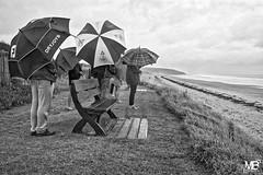 les parapluies DxOFP LM+35 1005024 (mich53 - thank you for your comments and 4M view) Tags: parapluie ombrella monochrome noirblanc france summiluxm35mmf14asph scènedevie manche leicamtype240 vacances 2017 lespieux beach famille promenade télémètre rangefinder entfernungsmesser normandy normandie coastling ciel pluie brutne rain