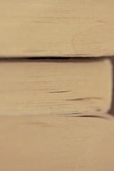 (Christelle Diawara) Tags: macro macromondays monochrome tranche livre tache babelnoir petermay trilogieécossaise bibliothèque luetrelu usagé passion papier lecture christellediawara