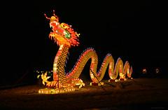 """China Light Festival"" Cologne (Frühtau) Tags: china light festival cologne köln illumination chinese sculpture licht darkness colours farben schema figures annimal tiere zoo dragon drache symbol luck"