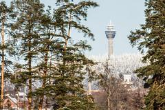 Maisema Puijolle päin (VisitLakeland) Tags: scenery scene kuopio winter finland maisema talvi forest tree puijo puijontorni tower torni