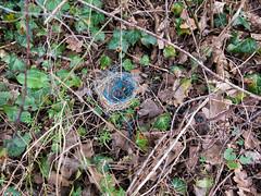 Abandonned bird nest (Elise de Korte) Tags: fr france frankrijk ldf lafrance hiver winter landscape landscapes landschap landschappen paysage landbouwtouw string touwtje vogelnest