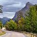 Mount Norquay Road in Banff, Alberta (Banff National Park)