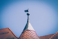 (c) Wolfgang Pfleger-7990 (wolfgangp_vienna) Tags: kostanjevicanakrki slovenien slovenia