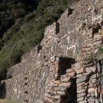 Choquequirao trek - the llamas in the terraces thumbnail