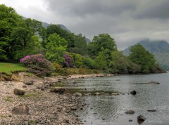 Wastwater, May 2017 (Ian Gedge) Tags: england uk britain cumbria lake lakedistrict wastwater 2017 water landscape fells