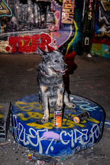 20170712 Trying my paws in art (susi luard 2012) Tags: waterloo esslinger leake rupert se1 street dog graffiti london streetart tunnel uk