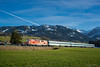 SVG 2143.21 in service ad ALEX - Oberthalhofen (Giovanni Grasso 71) Tags: 2143 svg giovanni grasso nikon d610
