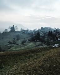 Moody Hills (danfaiz) Tags: moody foggy hills switzerland fujifilm curves lines green lanscape rural nonurban mountain