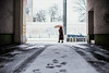 Elegance in Motion (ewitsoe) Tags: snow poznan winter snowfall heavysnow cold ewitsoe poland wintery chill zima street cityscape urban pedestrian neighborhood jezyce canon eos6dii 50mm 12 lseries lens glass