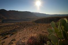 marufo-vega-trail