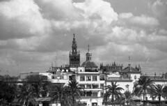 Sevilla (javp82) Tags: byn practika bms bn bw film pelicula analogico 35mm spain españa andalucia
