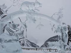 Baby bear ice sculpture (David R. Crowe) Tags: animal friends ice internations light mammal nature people sculpture translucence ursidae calgary alberta canada