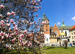 Wawel Castle (ika_pol) Tags: krakow cracow poland oldtown geotagged church unesco castle magnolia flower wawel spring