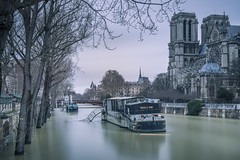 Flood in Paris (Sizun Eye (OFF for a while)) Tags: paris france flood crue seine river trees notredamecathedral notredame boat berges january2018 2018 january janvier cathèdrale sizuneye nikond750 d750 tamron2470mmf28 tamron leefilters leebigstopper nisifilters longexposure le poselongue