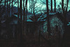 Witch House (Raptorfairy) Tags: forest darkforest sky mountains woods witchy witch spooky dark eerie horror photoshop canon monster creature moon fog mist foggy magic explore helios cabin