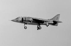 Hawker Harrier GR 1  XV752  52   233 OCU RAF Wittering (rac819) Tags: harrierxv752 hawkerharriergr1 233ocu wittering bigginhill airdisplay battleofbritaindisplay1971 rafbigginhill vtol