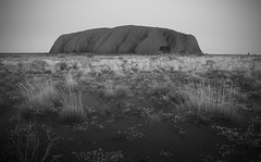Uluru (SawardPhotography) Tags: uluru ayrs rock australia outback travel alice springs oz aus holiday