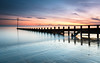 First Time Out (Damon Finlay) Tags: nikon d750 nikond750 tamron 2470 f28 tamron2470f28 long exposure longexposure leefilters coast seascape firth forth firthofforth portobello portobellobeach edinburgh earlymorning dawn sunrise beachgroynes scotland