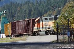 Local at Work (youngwarrior) Tags: homevalley washington train bnsf railroad local locomotive emd gp392