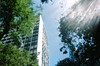 sunny day (arethaa_) Tags: 35mm city werlisa proimage