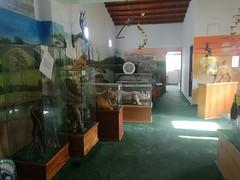 IMG_20180111_153038 (chocoenlaweb.com) Tags: chocó chocoenlaweb quibdó turismo colombia pacífico tutunendo naturaleza bahíasolano nuquí saldefrutas cascada ichó