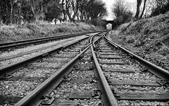 04 Over (manxmaid2000) Tags: railway rails points sleepers bridge track steam monochrome wood steel isleofman iom manx castletown over under crossing junction lines leading disappearing point vanishing low blackandwhite line transport trees bank tree fuji 1024