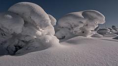 Winterfreuden für die Fotografen / Winter pleasures for the photographers (ludwigrudolf232) Tags: schnee bayerischer wald
