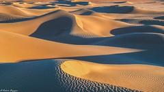 Giochi di luci ed ombre tra le dune di M'Hamid (BORGHY52) Tags: marocco alba dunedimhamid dune deserto desertodelsahara luci luciedombre ombre landscape sabbia africa