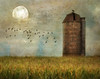 Moon, birds, and corn (Explore 2-12-18 #19) (David DeCamp) Tags: farm field moon rural rusty silo texture