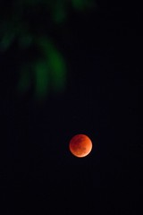 Super Blue Blood Moon..... The Lunar Eclipse (ibtihajtafheem) Tags: