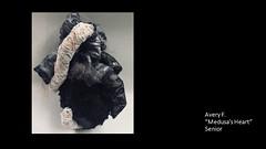 dubuquesenior-medusas-heart-avery