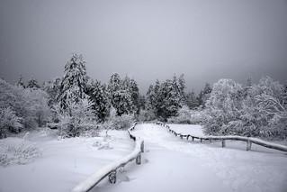 Winter feeling on Feldberg