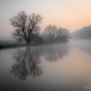 fog in the morning -explore-