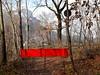 Sentiero dell'arte (PORTOBESENO) Tags: sentiero calliano bosco