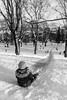 Sledding [E] (borishots) Tags: 28mm 28mmf2 sonyalpha7 sonyalphailce7 sonyfe28mmf2 borishots sony sonya7 wideangle sledding bw blackandwhite monochrome monochromatic trees snow winter ic ice oslo norway scandinavia people kid kids fun play playground