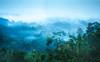 Foggy Valley (pramuditalina) Tags: punthuksetumbu magelang middle jawa borobudurtemple rainyseason sunrise foggy misty valley hill gerejaayam tree forest