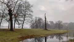 Dark and rainy January day