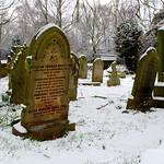 Flaybrick in the Snow