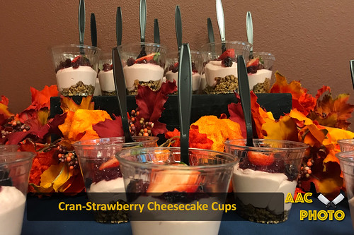 """Cranberry Strawberry Cheesecake Cups • <a style=""""font-size:0.8em;"""" href=""""http://www.flickr.com/photos/159796538@N03/39754022004/"""" target=""""_blank"""">View on Flickr</a>"""