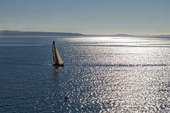 Race you to the finish (LukaBoban) Tags: sea sail sailboat yacht white blue maritime calmness seascape shore split croatia canon powershot g15 sky