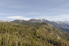Sequoia Landscape V (rschnaible (Not posting but enjoying your posts)) Tags: sequoia national park us usa california west western sierra nevada mountains rugged landscape outdoor moro rock area