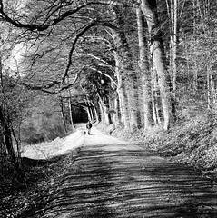 walking the dog (gato-gato-gato) Tags: 35mm 6x6 75mm ch iso800 ilford ls600 nikkorp nikkorp12875mm nikon noritsu noritsuls600 s2a slr switzerland wetzikon zenzabronica zenzabronicas2a analog analogphotography believeinfilm film filmisnotdead filmphotography flickr gatogatogato gatogatogatoch homedeveloped mediumformat tobiasgaulkech wwwgatogatogatoch zürich schweiz black white schwarz weiss bw blanco negro monochrom monochrome blanc noir streetphotography street strasse strase onthestreets streettogs streetpic streetphotographer mensch person human pedestrian fussgänger fusgänger passant suisse svizzera sviss zwitserland isviçre zuerich zurich zurigo zueri