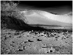 - Desert Sands - (claudiov958) Tags: biancoenero blackwhite blancoynegro california černýabílý claudiovaldés czarnyibiały deathvalley desert landscape mediumformat mediumformatdigital ngc noiretblanc pentax645z pretoebranco sanddunes schwarzundweiss черноеибелое pentaxart hdpentaxda6452845mmf45edawsr