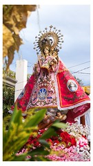 San Pedro Grand Marian Procession 2018 (Faithographia) Tags: faithographia faithography grandmarianprocession marianprocession bustos sanpedro marianevents marianevent