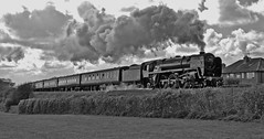 'The East Riding' (paul_braybrook) Tags: 70013 olivercromwell brstandard pacific steamlocomotive sewerby bridlington scarborough kingscross charter railtour railwaytouringcompany railway trains
